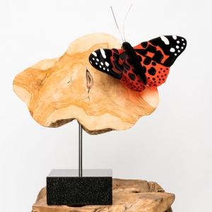 glazen beeld vlinder oranje rood zwart wit op teakhout en granieten sokkel